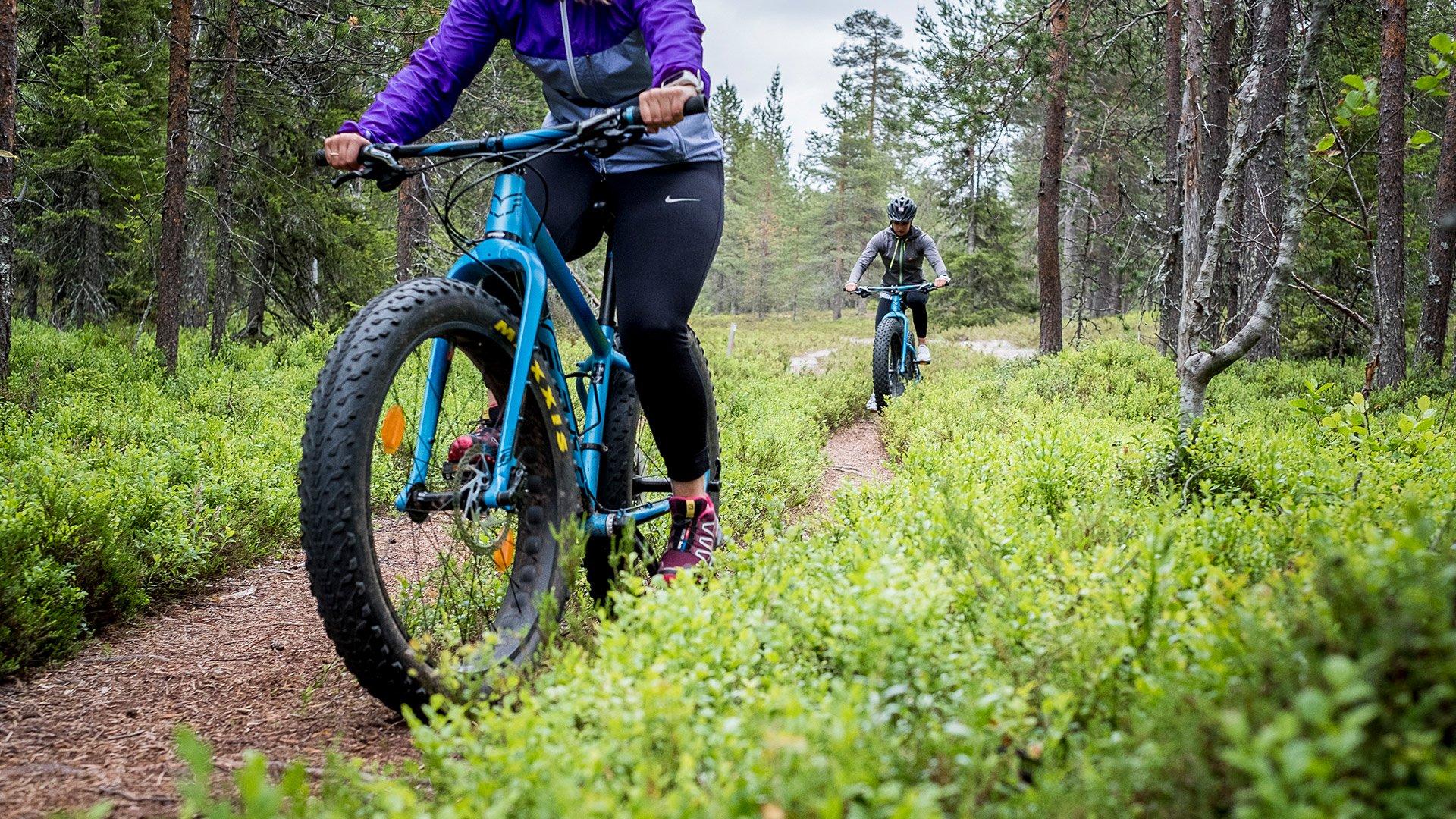 Kaksi henkilöä ajaa fatbikellä metsäisessä maisemassa.