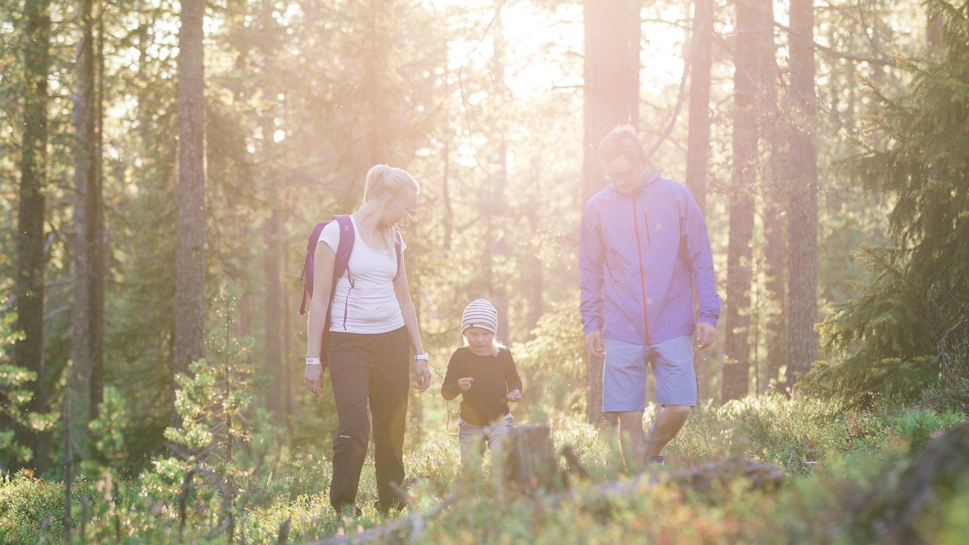Kaksi aikuista ja lapsi kävelevät marjametsässä reput selässä.